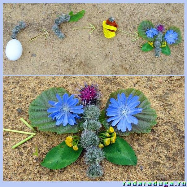 насекомые и их знакомые жук носорог